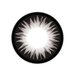 GEO Xtra WBS Bella Grey Color Lenses